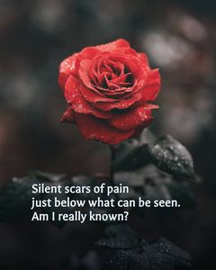 Silent Scars - HaikuLife