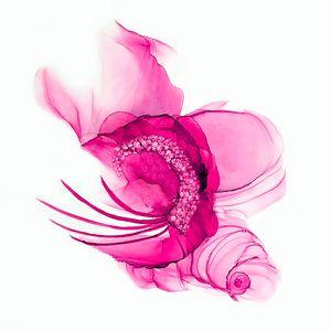 Raspberry Pink Fascinator
