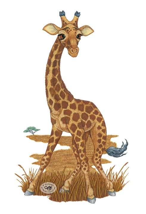 Giraffe - Illustration by Cat