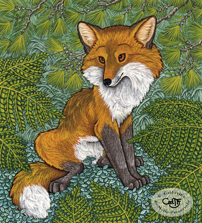 Pensive Fox in Ferns - Illustration by Cat