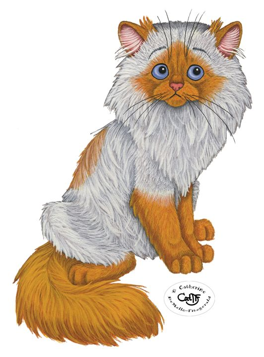 The Worried Himalayan - Illustration by Cat