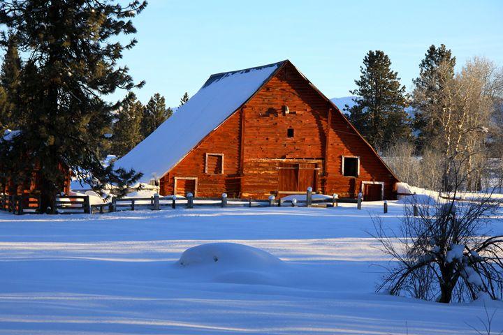 Warming Winter Light - Ed Riche