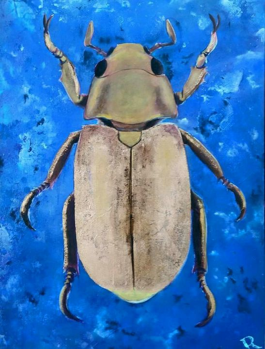 Golden blue beetle - robert kemmerer