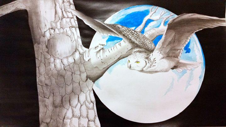 Night Owl - Magic Man McGann