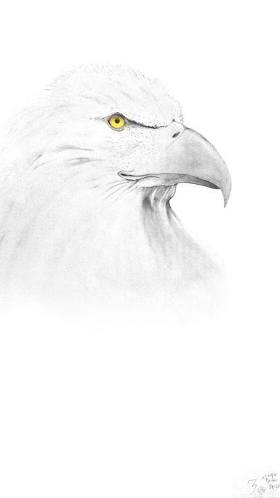 Eagle eye - Magic Man McGann