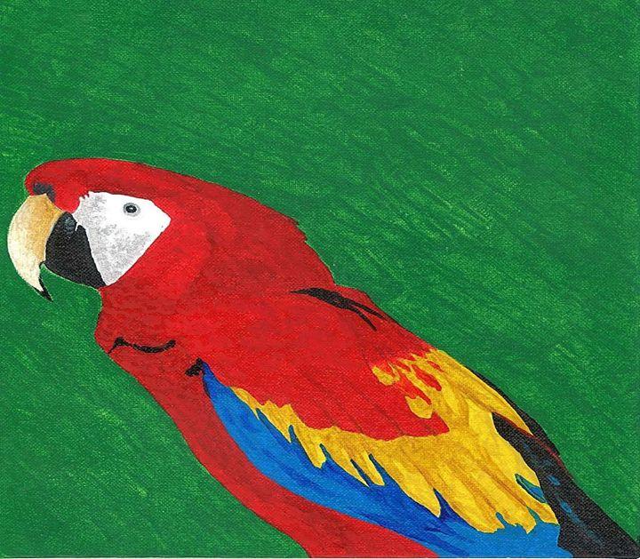 Parrot-top half - Magic Man McGann