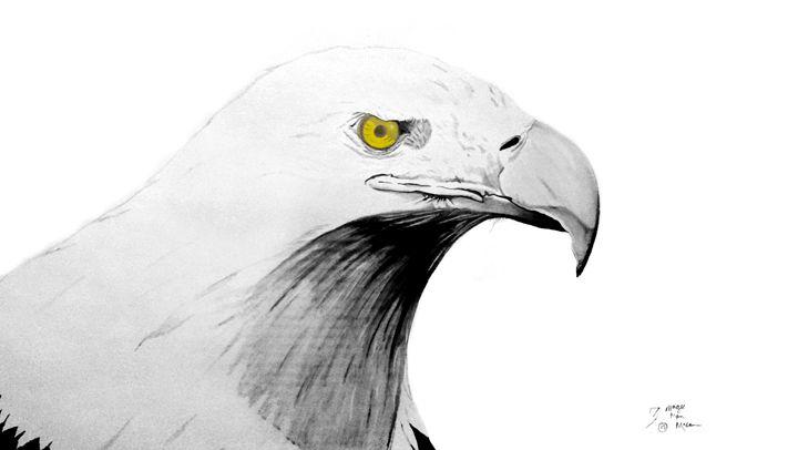 American Eagle - Magic Man McGann