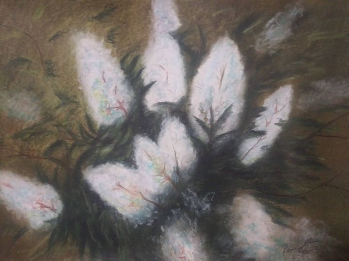 Cotton - McClellan Free Inside Art