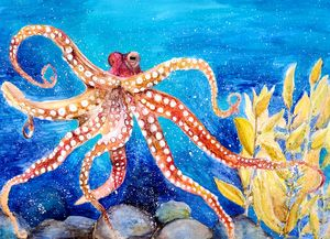 Dancing in the Blues - Octopus