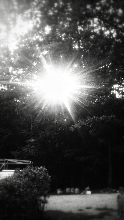 Sun shine - Tabitha Dowse