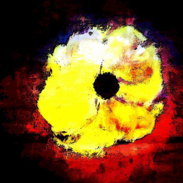 Yellow flower - Travis Rupe