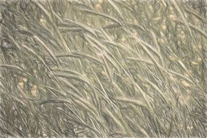 Windswept Grasses - Sketch Style