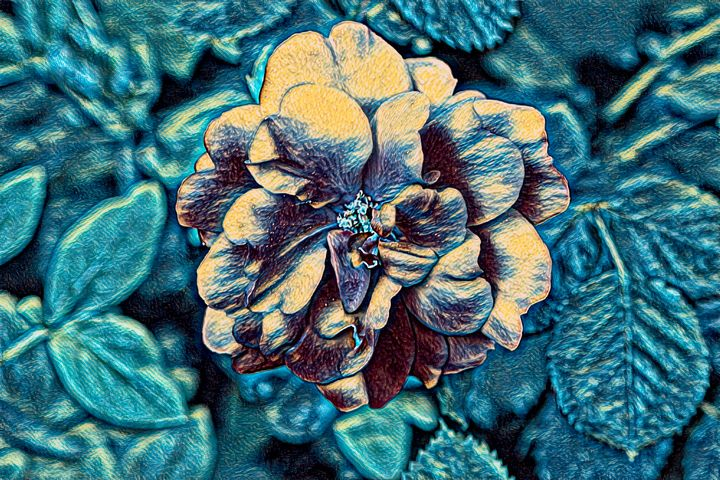 Rose Abstract in Turquoise - Impressions