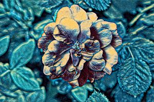 Rose Abstract in Turquoise
