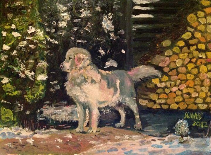 CLIFFORD - davidschab gallery