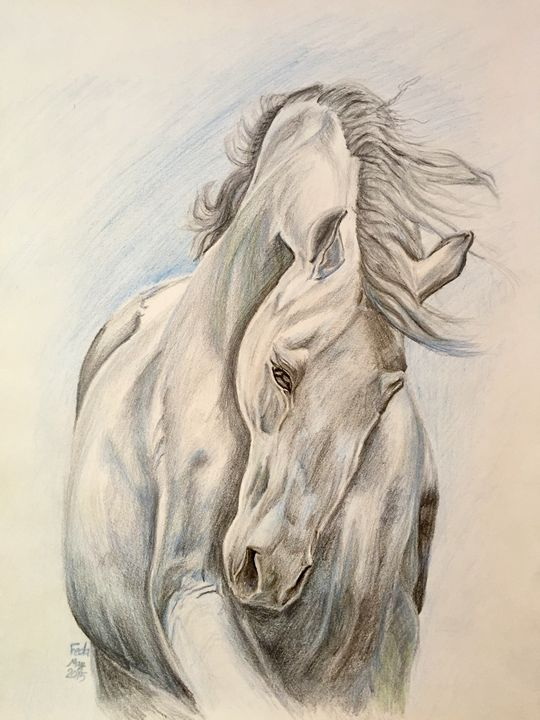 Dreamy horse - Feda's Art