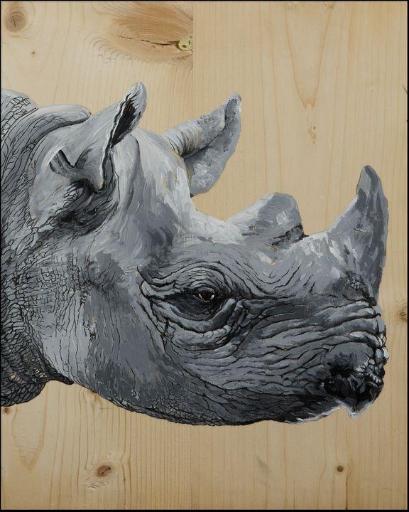 The Rhino - Artscape