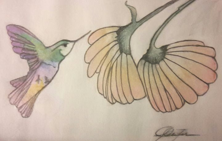 Hummingbird (Signed Copy) - Janay Clare Designs