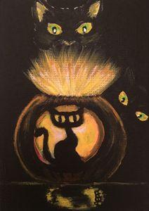 Black Cat Glow