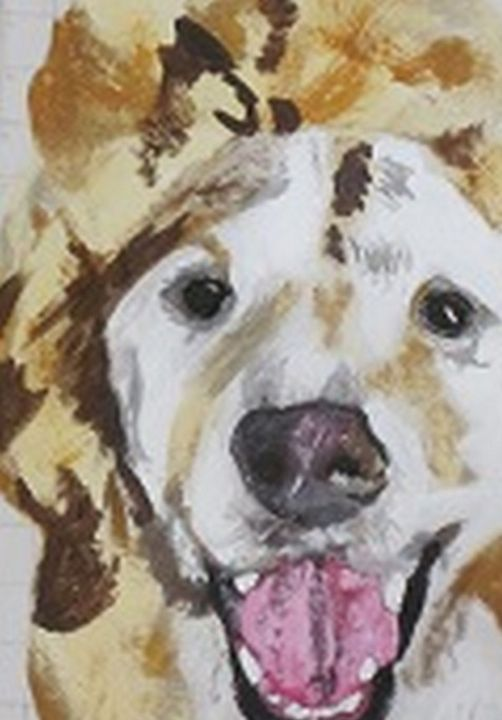 Labradoodle - chris cooper's art
