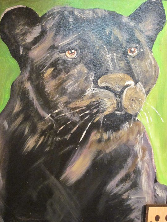 Stare of a Black Panther - chris cooper's art