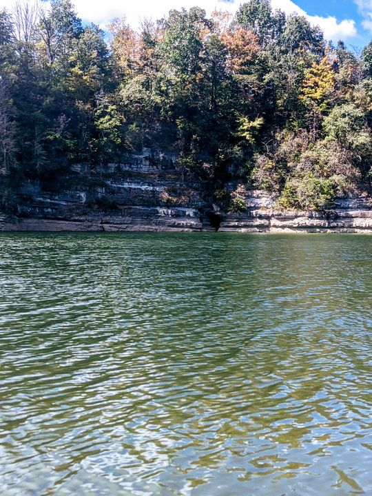 Norris lake - Splash Of Paint by Constance Hart