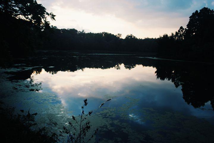 Wet Reflection. - IIBXYENCEVRTX™