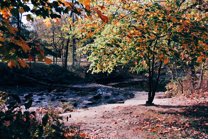 Autumn Colors4. - IIBXYENCEVRTX™