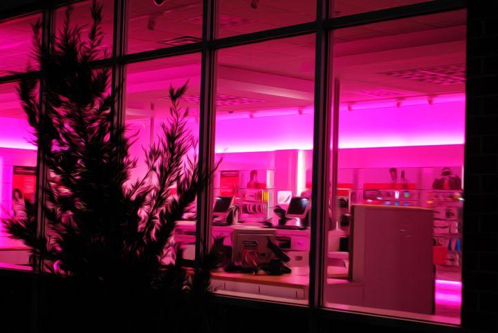 Pink Light. - IIBXYENCEVRTX™