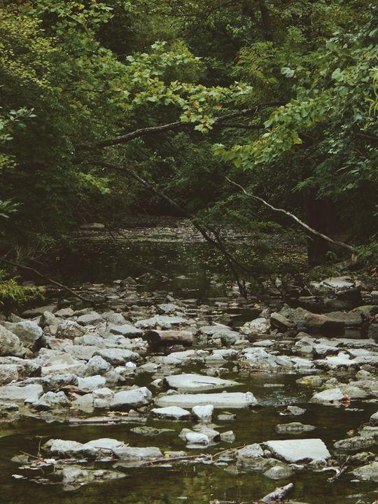 Nature Therapy. - IIBXYENCEVRTX™