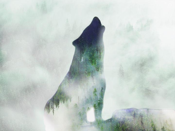 wolf howling - sadaf