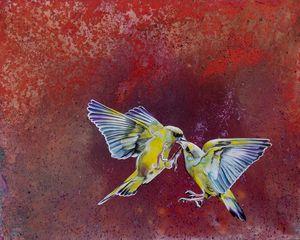 Le baiser de la Paruline