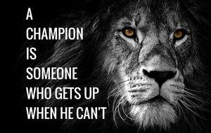 Motivation Quotes - Alex Creativity