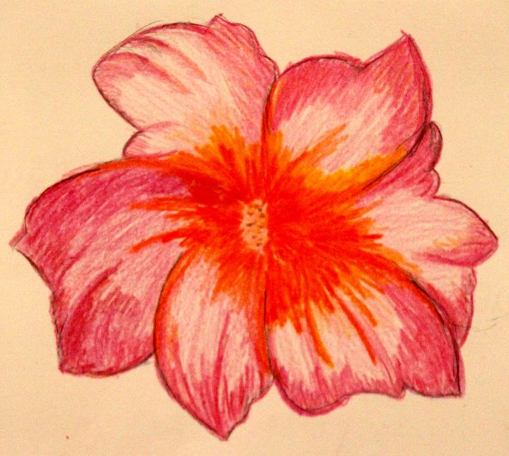 A Piece of Hawaii - Paintings by Liz