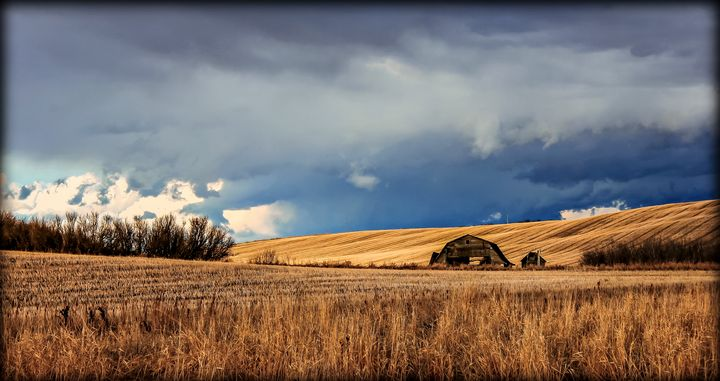 The barn. - Captured by Kat Photography