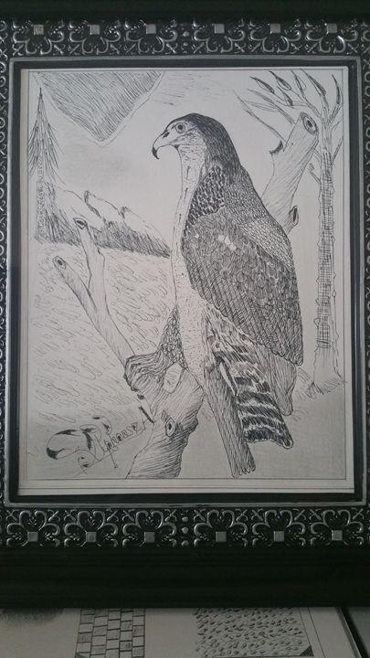 AFRICAN EAGLE - AKAlphonse