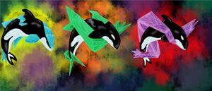 3 Orcas