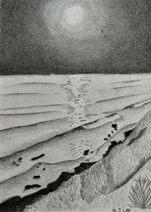 Moon lit ocean