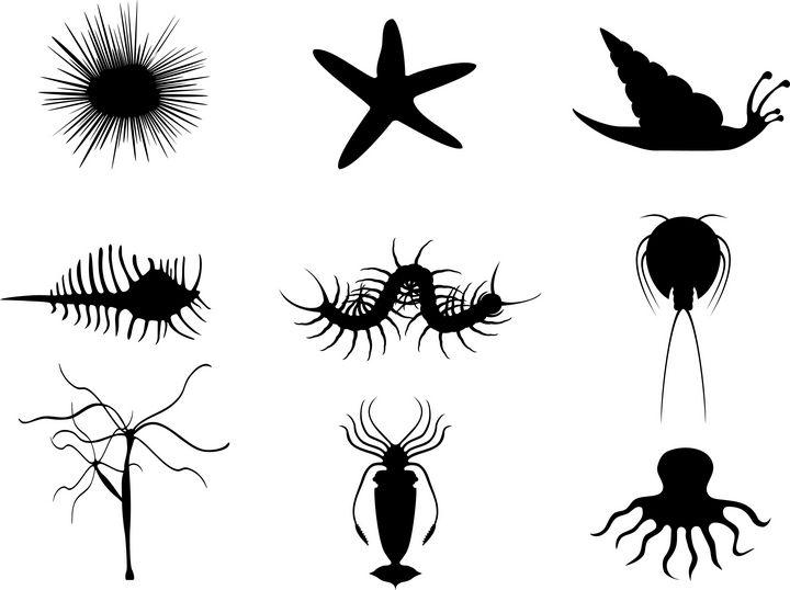 Invertebrate - Elonium