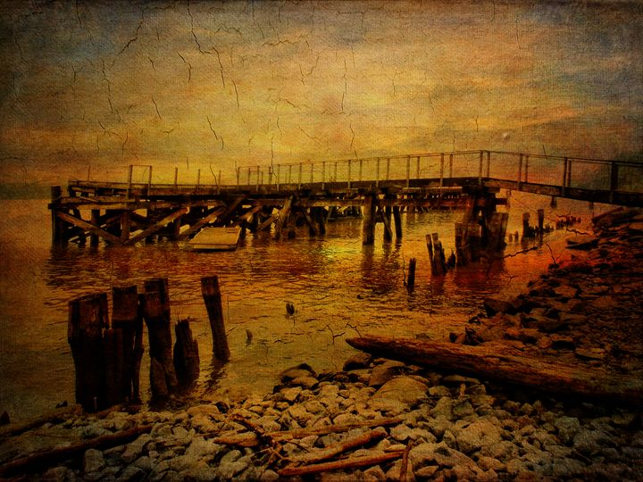 As The Sun Goes Down - Pine Singer Photographic Art