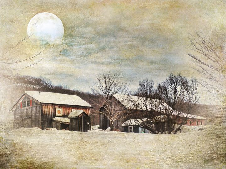Blissful Winter Farm - Pine Singer Photographic Art