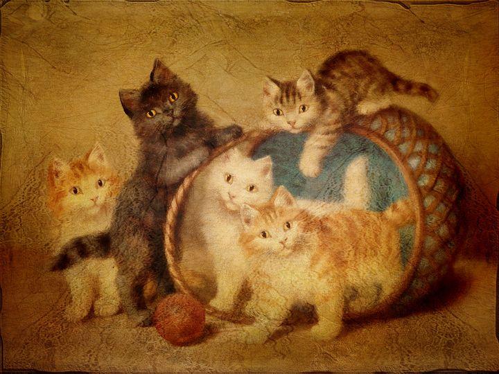 Unfailing Ingenious-Kittens - Pine Singer Photographic Art