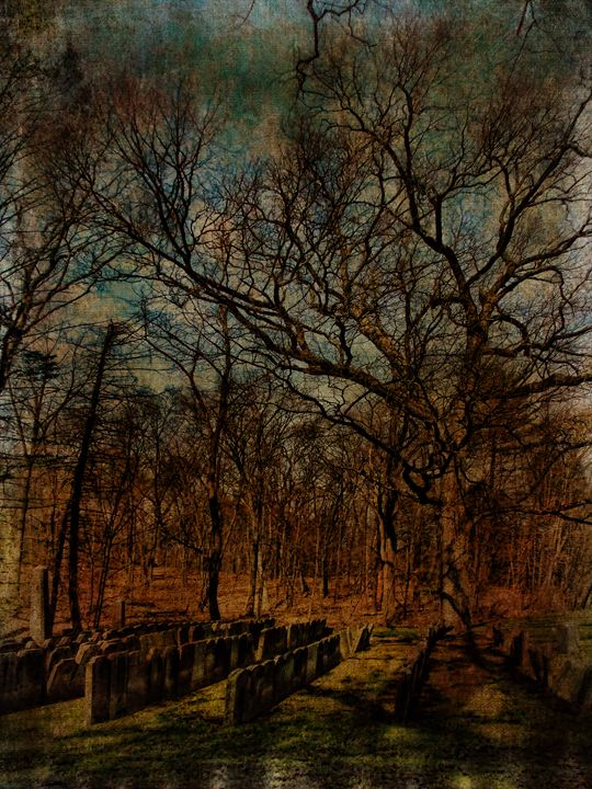 Cemetery within a Cemetery - Pine Singer Photographic Art