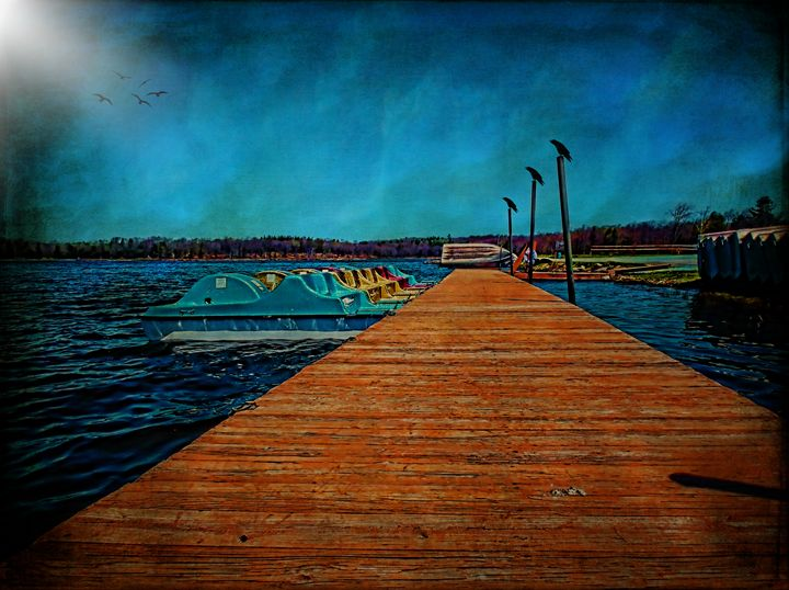 Waiting at the Lake - Pine Singer Photographic Art