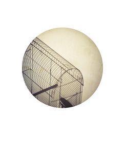 Cage/ Pinhole series
