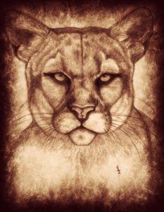 Cougar - CLE Art