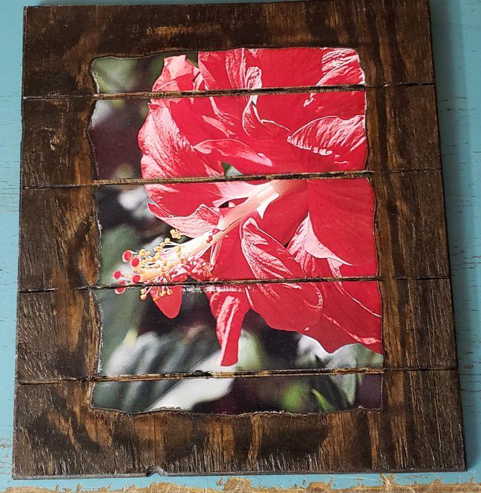 Red Flower - Brandy's Alluring Images, LLC