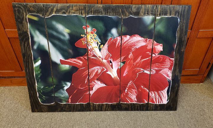 Red flower 20x30 - Brandy's Alluring Images, LLC