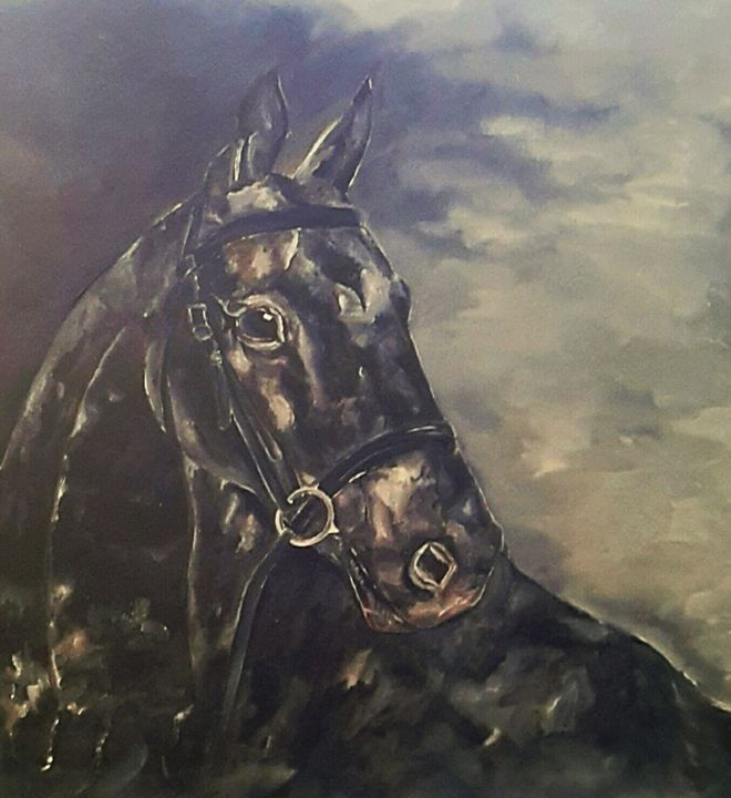 BLACK BEAUTY - STORM BY KAZ