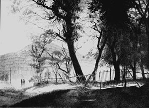 Saputara Landscape